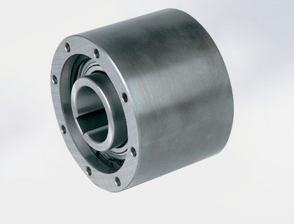 MZ Series One-way Clutch Bearing