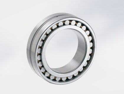 Double Row Cylindrical Roller Bearings NN30 Series